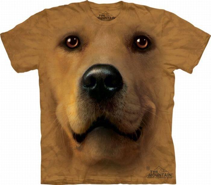 مدل هایی از تی شرت های جدید و 3 بعدی پسرانه